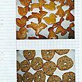 Biscuits de Noël et au sésame