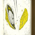 Intrinséque / jaune 03