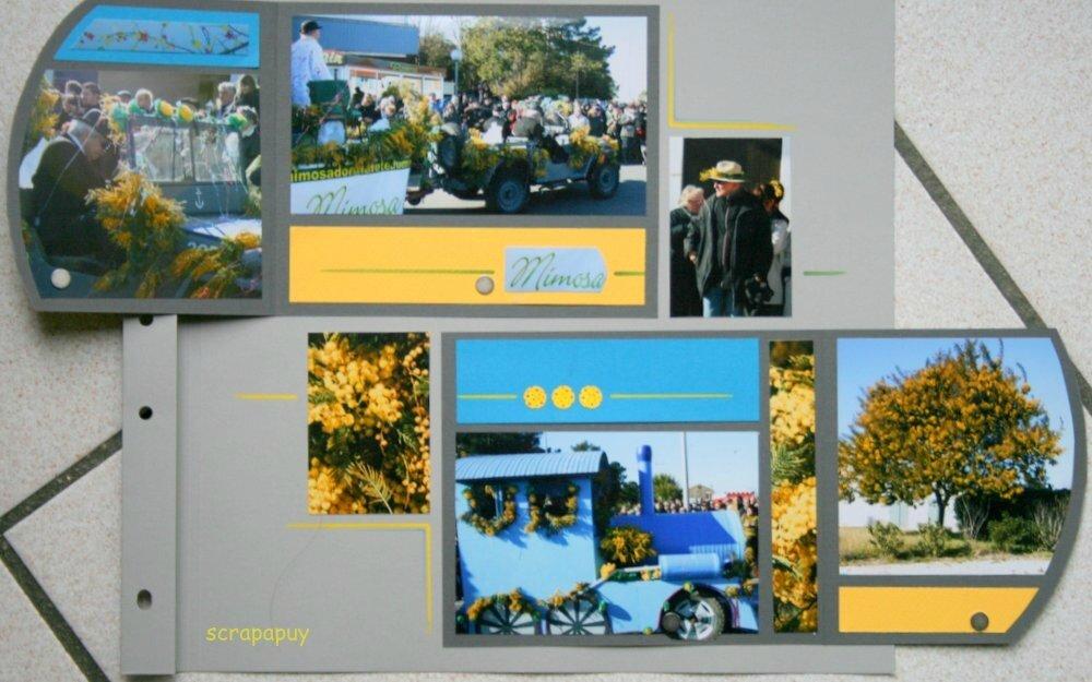 f�te du mimosa Saint Trojan f�vrier 2012