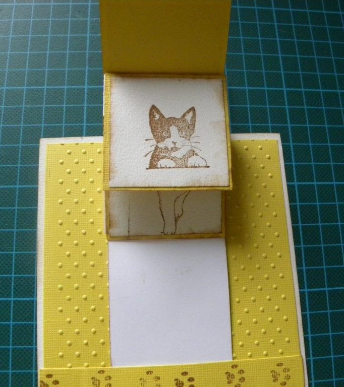 carte chat3