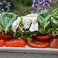 Tomates burrata très printanières