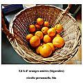 Oranges am