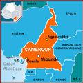 Cameroun: La <b>CPJ</b> dresse un rapport alarmant sur les attaques contre la presse en 2008 au Cameroun