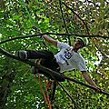 PHOTOS RRA (Rencontre Nationale d'<b>Arboriculture</b>) NORD-EST AU PARC DE LA MAIRIE A SANTES. JOURNEE DE QUALIFICATION DU 4 JUIN 2016