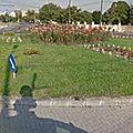 Rond-point à <b>Timisoara</b> (Roumanie)