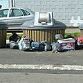 les conteneurs à déchets sous l'oeil des caméras de <b>vidéosurveillance</b> à Avranches (50)