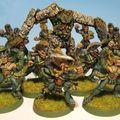 Mes équipes : les elfes sylvains