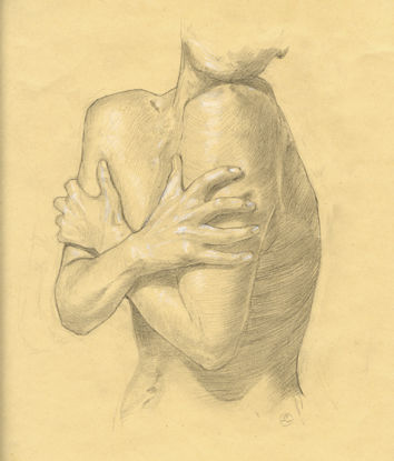 Ostéologie du bras 12 (Vue externe)