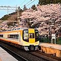 <b>Sakura</b>-7: Hasedera