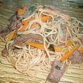 Nouilles sauté au boeuf, carottes et basilic thaï