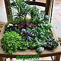 Micro-jardin