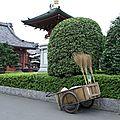 Sept ans de réflection : Japon 2006 / 2