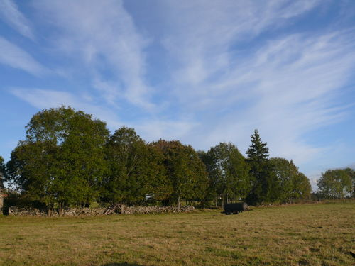 2008 10 04 Temps et paysage d'automne