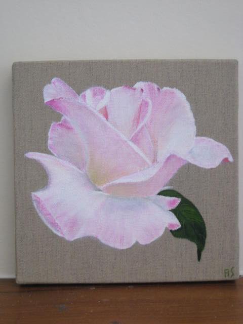 rose du jardin petit modèle (20x20)