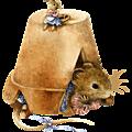Le terrier des ratdoux.