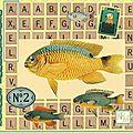 Carte Anniv Axel- 2 ans
