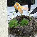 <b>Nid</b> d'oiseau décoré