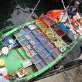 99- les bateaux boutique