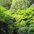 Japon 2010 327