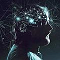 ➡️Des scientifiques <b>affirment</b> que notre cerveau serait multidimensionnel