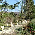 CHANTIER PVF de démontage et d'abattage. Mars 2004.