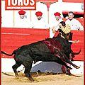 Toros et toromag de début juin 2013 sont en vente