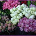 Ces quelques fleurs......