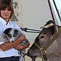 Etre une jeune agricultrice en 2012