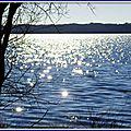 Diamants Lac Vielle 1902152