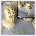 Macarons matcha / chocolat blanc- amande