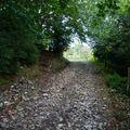 2009 09 19 Un chemin au Col des Limouches