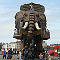elephan6