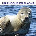 complainte du <b>phoque</b> en Alaska/F leclerc
