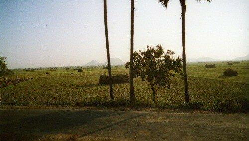 Route d'Undavalli