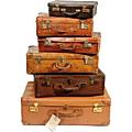 Les bagages de la vie
