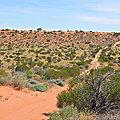AUSTRALIE - Bientôt la création d'un parc national géant