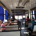 11 Bus de luxe jusqu'au jardin botanique
