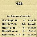 Montocchio (Félix) Michel_The Monthly Air Force list 1919
