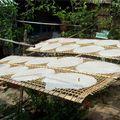 Séchage des galettes de riz
