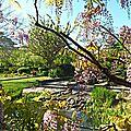 Découverte du parc des impressionistes avec loustic (17 avril 2014)