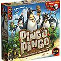 Boutique jeux de société - Pontivy - morbihan - ludis factory - Pingo pingo