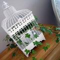 Une cage à oiseau ... & cadeaux