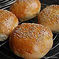 <b>Buns</b> ou pains à burger pour de délicieux burgers maison