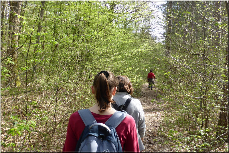 Geocaching foret d'Orleans (17)