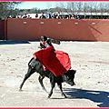 FIESTA CAMPERA A BESSAN (34)