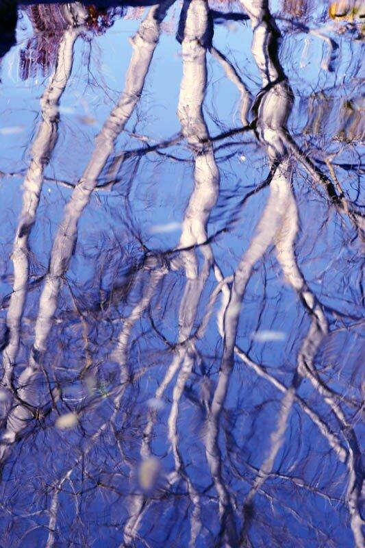 reflets d'automne03