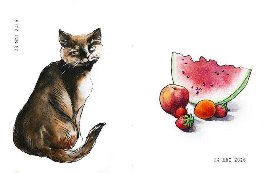 23 - A pet / 24 - Favorite fruit or veggie