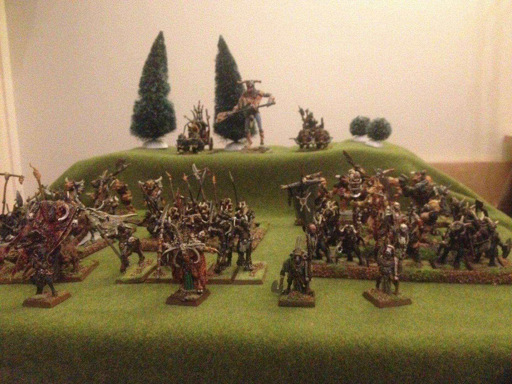 Warhammer Hommes Betes