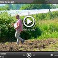 Vidéo jachère florale