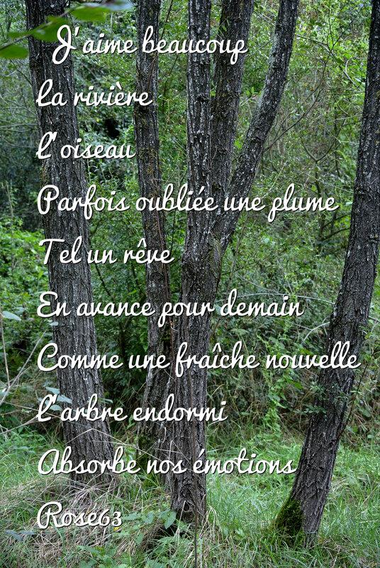 _DSC0563 mon poème mes mots la vie tout simplement